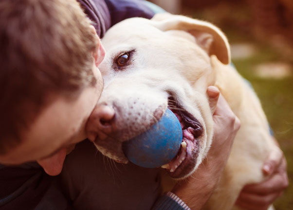 Hugging a dog with a blue ball in its mouth