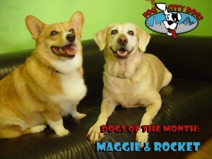 Maggie and Rocket